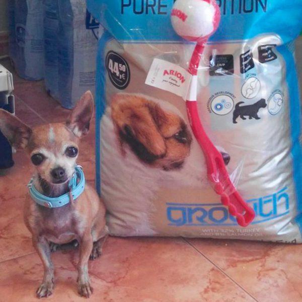 saco de pienso para perros con pelota de merchandising hecha por Servimarket
