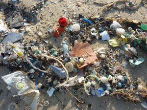 Contaminación de plástico en playa